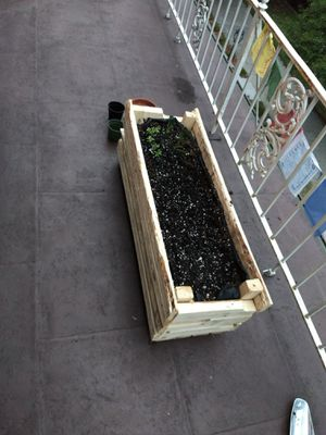 Cool looking recycled pallet hand made planter box. Great decor for patio. 100 bucks only. for Sale in Grosse Pointe, MI