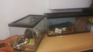 2 Animal Tanks with various decorations and supplies for Sale in Canton, MA