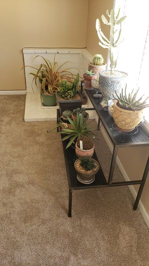 Custom made plant stand for Sale in Pinon Hills, CA