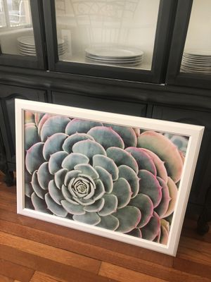 White Frame and Succulent Poster for Sale in Tampa, FL