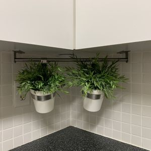 Plant Holder With 2 Plants for Sale in Hollywood, FL