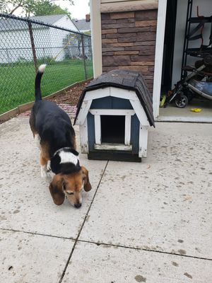 Dog house for small dog for Sale in Willowick, OH