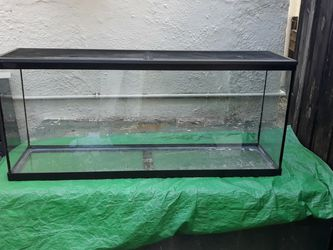 Fish Tank / Reptile Tank for Sale in Fort Lauderdale,  FL