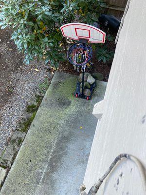 Basketball hoop 6ft for Sale in Auburn, WA