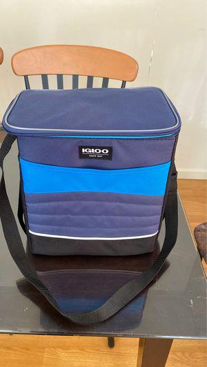 Igloo cooler bag for Sale in Germantown, MD