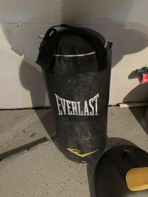40lb Everlasting punching bag for Sale in Dover, DE