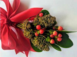 Mistletoe for Sale in San Pedro, CA