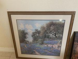 Blue bonnet picture for Sale in Floresville, TX