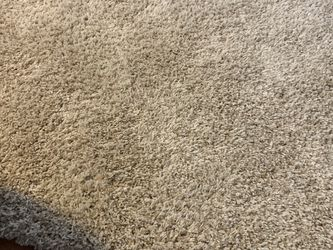 Large Area Rug for Sale in Frederick,  MD