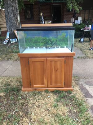 Fish tank with all the perks for Sale in Denver, CO