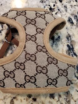Gucci dog/cat Harness for Sale in Riverview,  FL