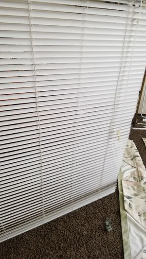 French Door Blinds-White for Sale in Tacoma, WA