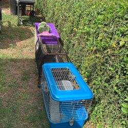 Rabbit Cages for Sale in Orlando,  FL