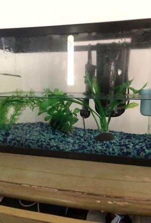 5 gallon Fish tank for Sale in Long Beach, CA