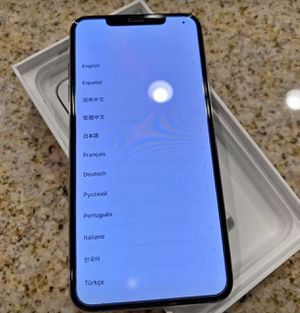 Silver iPhone XS Max (INCLUDING Apple care) for Sale in Traverse City, MI