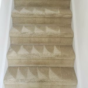 I can make your carpet new. Se puede hacer tu alfombras nueva for Sale in Kissimmee, FL