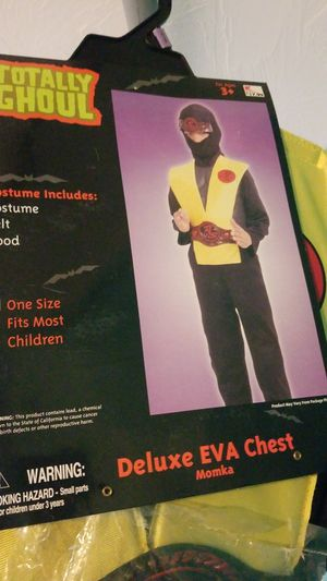 Boys Costume worn once for Sale in Worcester, MA