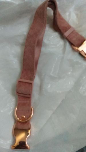 Alummax dog collar never been used for Sale in Gilroy, CA