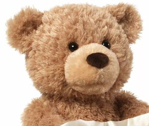 Gund Animated Peek A Boo Bear Plush Stuffed Animal for Sale in Cedar Park, TX