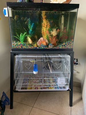 29 gallons fish tank and bird cage for Sale in Miami, FL