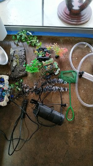 All for $20 turtle tank accessories for Sale in Dallas, TX