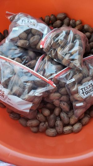 Nueces for Sale in Houston, TX