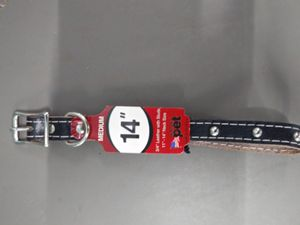 """14"""" Leather Studed Dog Collar for Medium Dogs for Sale in Fullerton, CA"""