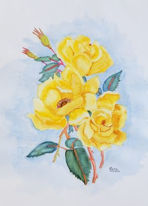 Yellow Roses for Sale in Oakland Park, FL