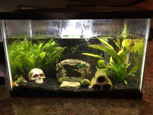 10 gallon Aquarium for Sale in Gresham, OR