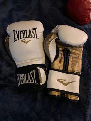 Everlast 12oz Boxing Gloves for Sale in Fresno, CA