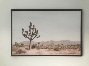 Joshua tree photo for Sale in Encinitas, CA