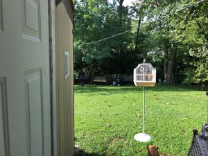 Bird cage for Sale in Overland, MO