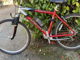 Giant Mountain Bike for Sale in Seattle,  WA