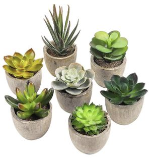 7 Artificial Succulent Plants for Sale in San Diego, CA
