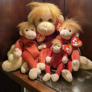 Schweetheart Beanie Baby Lot 1999 for Sale in San Antonio, TX