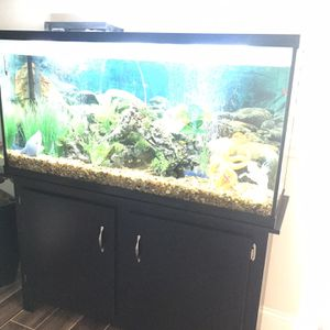 Fish Tank for Sale in New Port Richey, FL