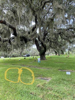 Cemetery plots in Oaklawn Park for Sale in Sanford, FL