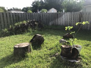 Woods and metal for Sale in Jacksonville, FL