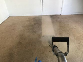Carpet Cleaner for Sale in Casselberry,  FL