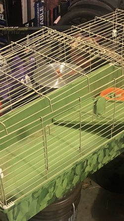 Guinea pig/animal Cage for Sale in Smyrna,  TN