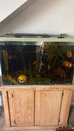 Fish tank with fish!!! for Sale in Menifee, CA