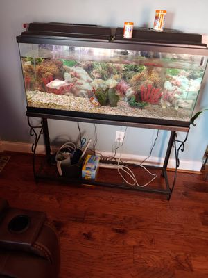Large Fish Tank w/Fish and Accessories for Sale in Clarksville, TN