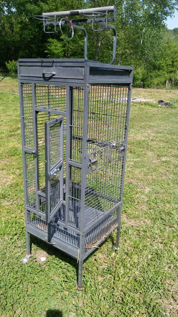 Viewing this bird cage evo 125