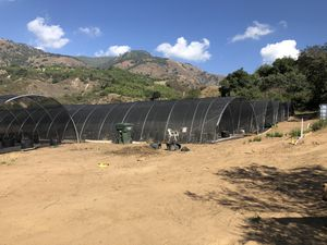 Round Greenhouses/Canopies 6 total for Sale in Pauma Valley, CA