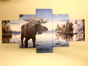 Moose Canvas Panel Wall Art for Sale in Staten Island, NY