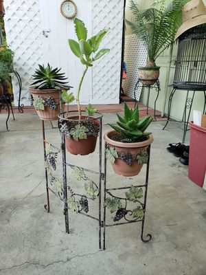 Garden stand with plants $24.99 for Sale in Ontario, CA