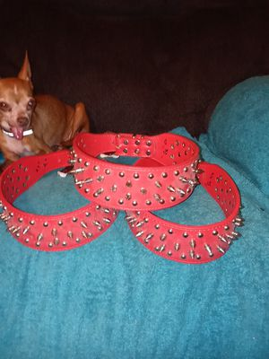 "27""Spiked Dog Collars for Sale in South Zanesville, OH"