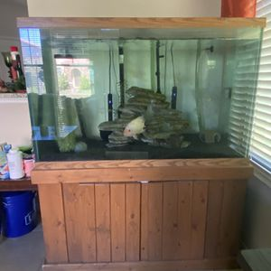 150 Gallon Fish Tank With Canisters, Lights And Heaters for Sale in Ocoee, FL