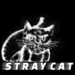 STRAY CAT MUG AND CANVAS ART PRINTS for Sale in Baltimore,  MD