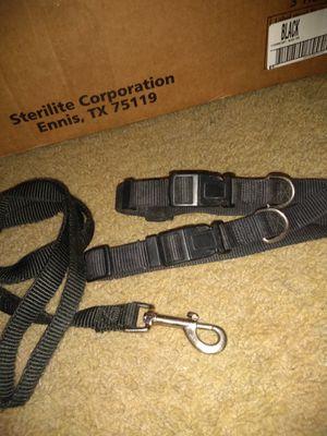 2 Collars & 1 Leash for Sale in Mesa, AZ
